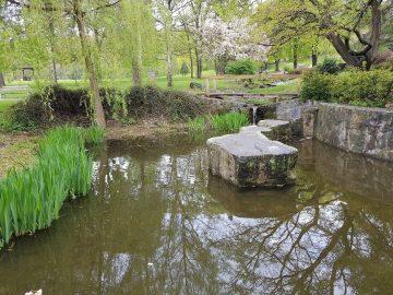 Recenze Samsung S8 fotoaparat jezero park
