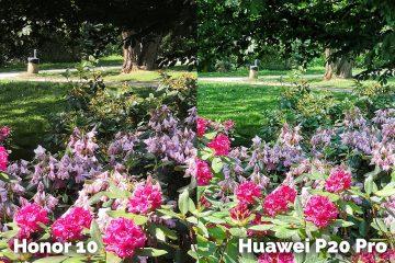 Honor 10 vs Huawei P20 Pro foto test kytice
