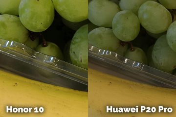 fototest Honor 10 vs Huawei P20 Pro ovoce detail