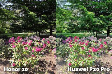 foto testHonor 10 vs Huawei P20 Pro zahrada