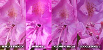 Který mobil fotí nejlépe? detail květ