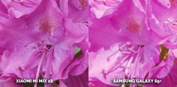 Jaký mobil s dobrým fotoaparátem koupit? Xiaomi Mi Mix 2S nebo Samsung Galaxy S9 Plus - kytice