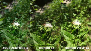 Fotografovani Asus Zenfone 5 vs. Honor 10 vs. Honor View 10 zelen