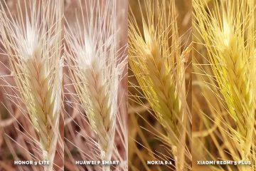 Huawei vs Honor vs Xiaomi vs Nokia fototest levnych mobilu - obili