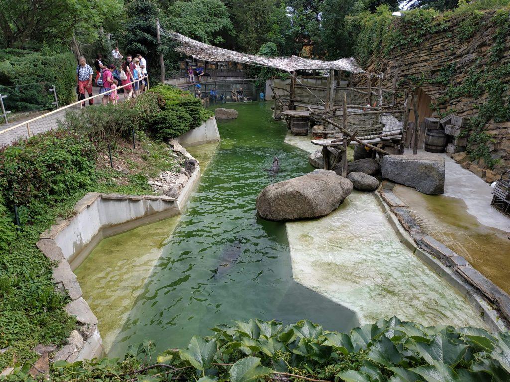 Xiaomi Redmi Note 5 foto zoo