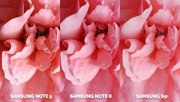 fotografie kytice ruzova note 9 vs note 8 vs galaxy s9