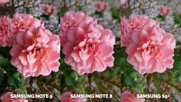 fotografie kytka test fotoaparatu note 9 vs note 8 vs galaxy s9